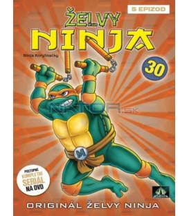 ŽELVY NINJA 30   (Teenage Mutant Ninja Turtles)  DVD