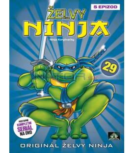 ŽELVY NINJA 29   (Teenage Mutant Ninja Turtles) DVD