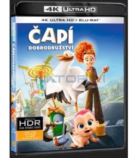 Bociany (Čapí dobrodružství) (Storks) UHD+BD - 2 x Blu-ray