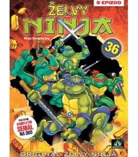 ŽELVY NINJA 36 (Teenage Mutant NINJA Turtles) DVD