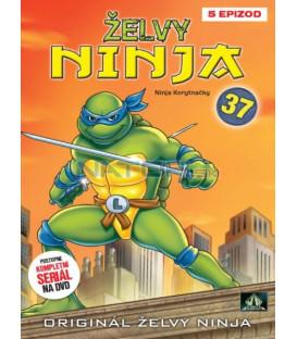 ŽELVY NINJA 37 (Teenage Mutant NINJA Turtles) DVD