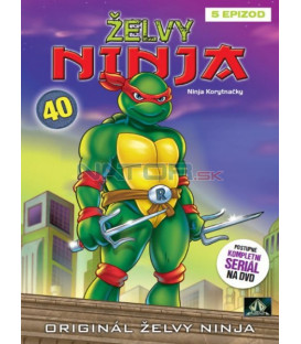 ŽELVY NINJA 40 (Teenage Mutant NINJA Turtles) DVD