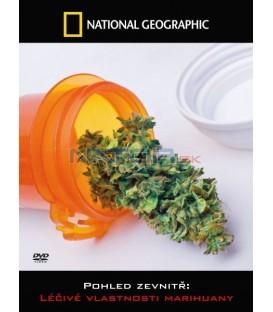Pohled zevnitř: Léčivé vlastnosti marihuany   (Inside Medical Marijuana)