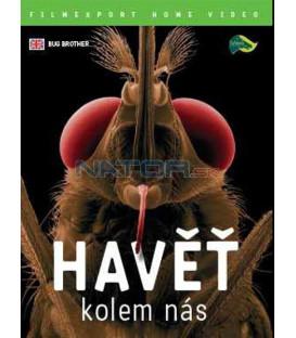 Havěť kolem nás (Bug Brother) DVD