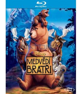 Medvědí bratři (Brother Bear ) Blu-ray