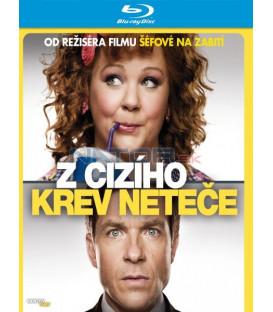 Z cizího krev neteče (Identity Theft) - Blu-Ray