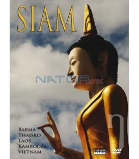 SIAM  (SIAM) DVD