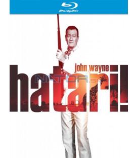 Hatari! (Hatari!) - Blu-ray