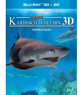Tajemství karibských hlubin (Adventure Carribean 3D) Blu-ray 3D
