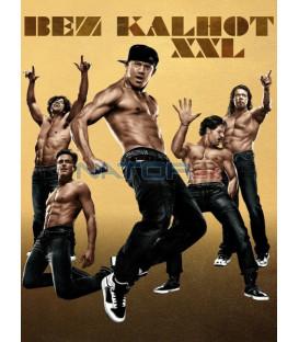 BEZ KALHOT 2 (Magic Mike XXL) DVD