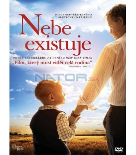 Nebe existuje (Heaven Is for Real) DVD