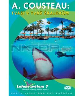 Letem světem 07 DVD