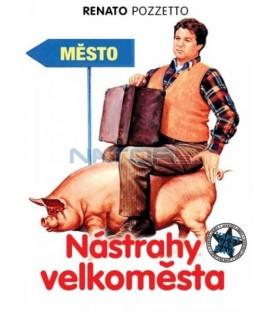 Nástrahy velkoměsta (Ragazzo di campagna, Il) DVD