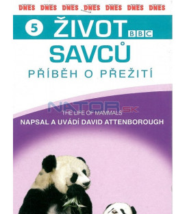 Život savců 5 (The Life of Mammals) DVD