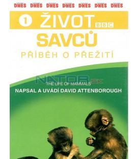 Život savců 1 (The Life of Mammals) DVD