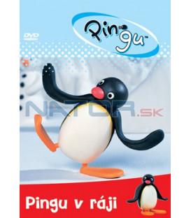 Pingu v ráji 01 DVD