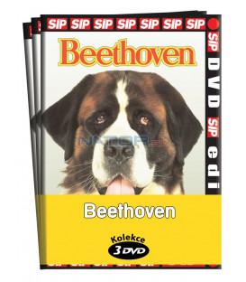 Beethoven  / kolekce 3 DVD