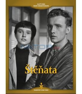Štěňata DVD