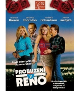 Probuzení v Renu (Waking Up in Reno) DVD