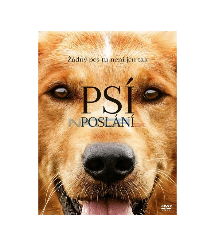 Dog S Purpose Steelbook