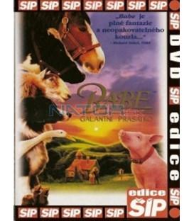 Babe - galantní prasátko (Babe) DVD