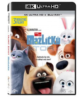 Tajný život mazlíčků (The Secret Life of Pets) UHD+BD - 2 x Blu-ray