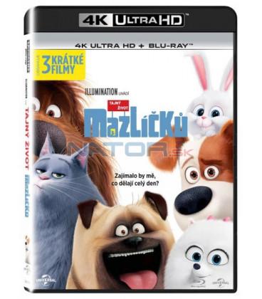 0fbda6e61 Tajný život mazlíčků (The Secret Life of Pets) UHD+BD - 2 x Blu-ray ...