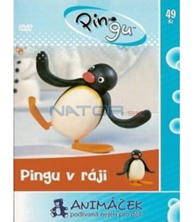 Pingu 1 - v ráji (Pingu) DVD