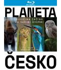 Planeta Česko 2017 Blu-ray