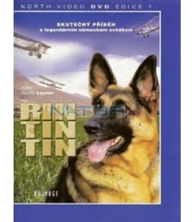 Rin Tin Tin (Finding Rin Tin Tin) DVD