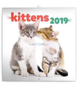 Poznámkový kalendár Mačiatka 2019, 30 x 30 cm