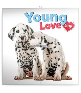 Poznámkový kalendár Young Love 2019, 30 x 30 cm