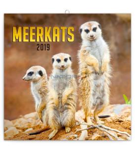 Poznámkový kalendár Surikaty 2019, 30 x 30 cm