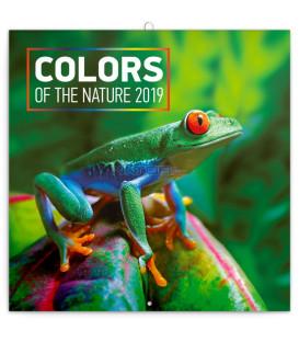 Poznámkový kalendár Farby v prírode 2019, 30 x 30 cm