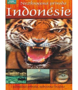 Nezkrocená příroda Indonésie (Wild Indonesia: Island Castaways / Underwater Wonderland / Magical Forests) DVD