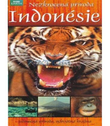Nezkrocená příroda Indonésie (Wild Indonesia: Island Castaways / Underwater Wonderland / Magical Forests) DVD