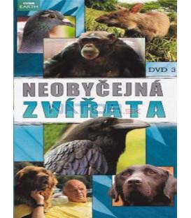 Neobyčejná zvířata - DVD 3 (Extraordinary Animals) DVD