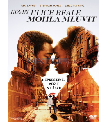 Kdyby ulice Beala mohla mluvit 2018 (If Beale Street Could Talk) DVD