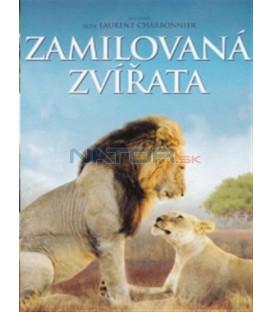 Zamilovaná zvířata (Les animaux amoureux) DVD