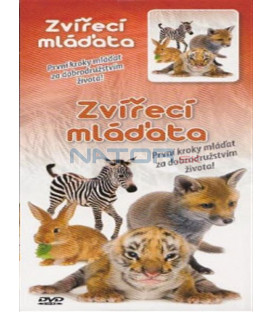 Zvířecí mláďata (Animals & Wildlife - Life in the New World) DVD