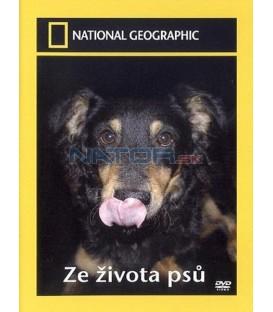 Ze života psů (Science of Dogs)