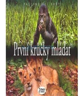 PRVNÍ KRŮČKY MLÁĎAT /2 DVD/