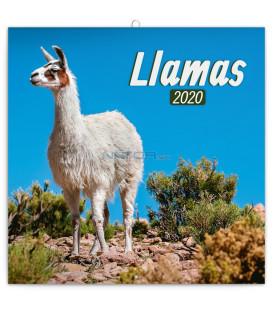 Poznámkový kalendár Lamy 2020, 30 x 30 cm