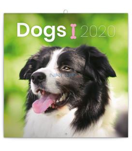 Poznámkový kalendár Psy 2020, 30 x 30 cm