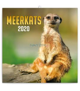 Poznámkový kalendár Surikaty 2020, 30 x 30 cm