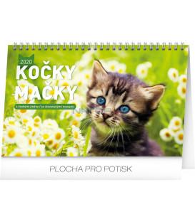 Stolový kalendár Kočky – Mačky CZ/SK 2020, 23,1 x 14,5 cm