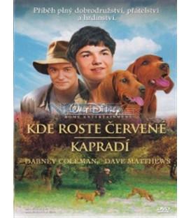 Kde roste červené kapradí (Where the Red Fern Grows) DVD
