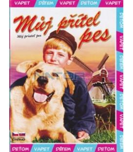 Můj přítel pes (A Dog of Flanders) DVD
