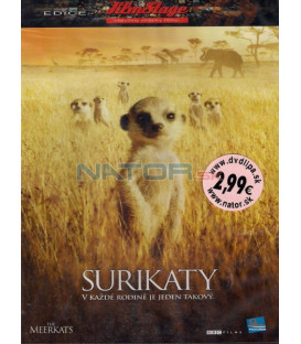 Rodina surikat 2008 (The Meerkats) DVD