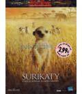 Rodina surikat 2008 (The Meerkats) DVD